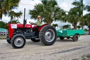 Mini-agrar delovi za traktore Beograd